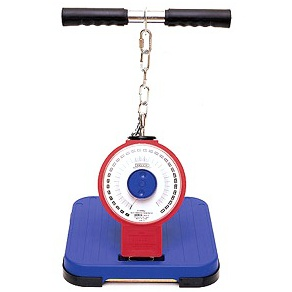 no. 5002 — back muscle dynamometer